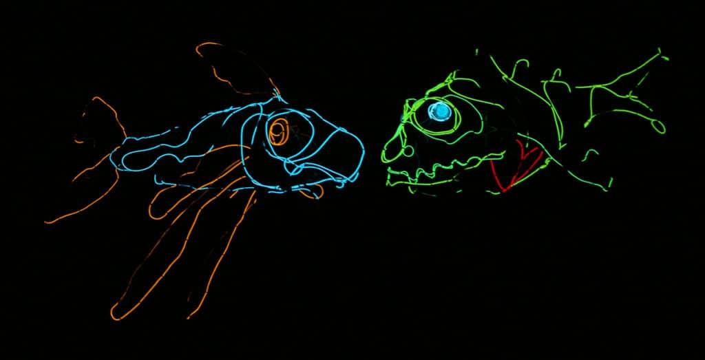 STARS: Dino-Light